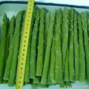 asparagus type iqf asparagus tips iqf asparagus cut iqf asparagus ...