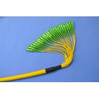 Ribbon / Bundle SC,FC,ST,LC Optical Fiber Patch Cord With 0.9, 2.0, 3.0 Fanout Available