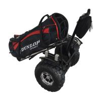 Buy cheap 2014 Cool electric golf carts for sale product