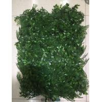 Buy cheap Grass Panel Boxwood Artificial Green Wall Plant For Decoration Eco - Friendly product