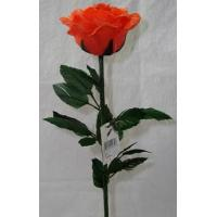 China Feather Roses on sale