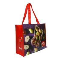 Eco Handmade Non Woven Shopping Tote Laminated Grocery Bags For Women