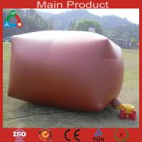 Buy cheap 8m³Low maintenance cost biogas equipment for 5-6 people product