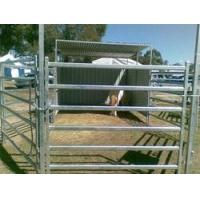 Buy cheap 6 Bar Heavy Cattle Panel product