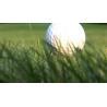 Buy cheap 10mm Artificial Golf grass SJAGF10(Qingdao SKYJADE) from wholesalers