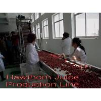 Buy cheap Hawthorn Juice Production Line product