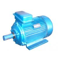 China 380V 415V Customized 3 Phase Asynchronous Motor For Hoist , YZ Series on sale