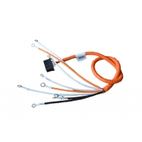 Buy cheap ISO 22 AWG 12 Pin New Energy Vehicle Wiring Harness product