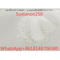 Buy cheap Mixed Raw Steroid Powders Sustanon250 Testosterone Blend For Muscle Growth 99% product