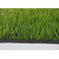 Quality Size Customize Green PP/PE/PU Daliy Use Artificial Plant Turf for sale