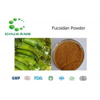 ISO Passed Organic Kelp Powder / Kelp Extract CAS 9072 19 9 With Two Years Shelf Life