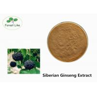 China Eleutheroside 0.8% Siberian Ginseng Root Extract Powder For Improving Immunity on sale