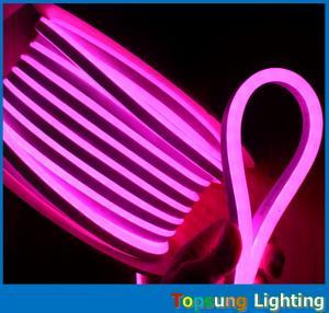 China 24v/12v rgb led light 8.5*17mm size neon flex light with ce rohs ul certification on sale