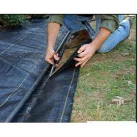 Weed Barrier Cloth Home Depot Weed Block Fabric Weed