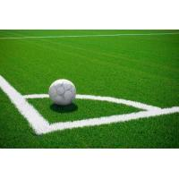 Buy cheap 2011 new artificial grass for soccer SJAKWG60 product
