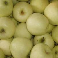 Buy cheap Golden Delicious Apple product