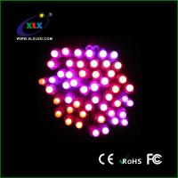 China High Quality 5050 smd rgb ws2811 Led Strip for Christmas Gifts on sale