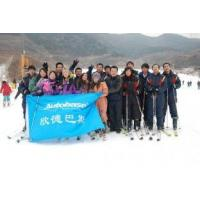 Buy cheap Autobase ski field in 2010 product