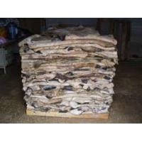 China Wet Salted Cow Skin, Cow Heads And Animal Skins, Wet Blue Cow Hides for sale on sale