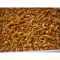 China IQF New Crop  Frozen Fruits And Vegetables Forest Nameko Mushroom Whole Part on sale