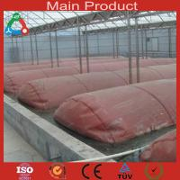 Buy cheap Double membrane biogas digester for industry product