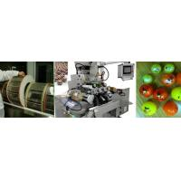 Softgel Capsule Counting and Bottling Machine Line For Pharmaceutical Manufacturer