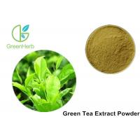 China Healthy Green Tea Extract Powder Fat Loss For Food And Drink , ISO GMP Standard on sale