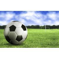 Buy cheap Soccer&football court artificial turf (samples free) product