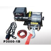 Quality Winch with CE (P3000-1B) for sale