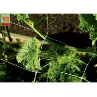Buy cheap White Plastic Pea And Bean Netting , Extruded Polyethylene Mesh Netting 3 Meters Width product