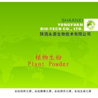 Buy cheap Shaanxi Yongyuan Bio-Tech supply Herbal Powder,Achyranthes aspera Powder product