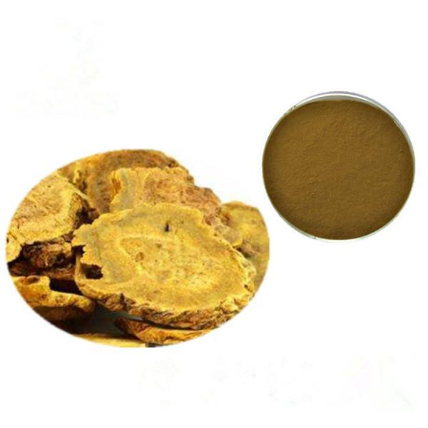 Quality Brown Yellow Fine Rhubarb Root Powder Rhubarb Extract Powder TLC Test for sale