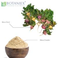 Buy cheap Best Selling Quality Professional Maca, Maca Powder, Maca Powder Extract for Men