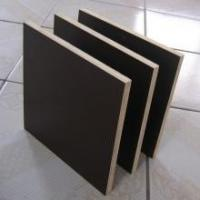 18mm used core face film faced plywoods sheet prices for Construction