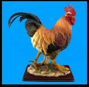 Buy cheap Animal Figurine product
