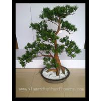 High Quality Artificial Pine Bonsai for Sale