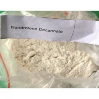China White powder DECA Durabolin Steroids Nandrolone Decanoate / Deca Durabolin Build Strong Muscles 360-70-3 on sale