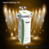 China Super fast amazing result cryolipolysis freezing fat equipment to lose weight on sale