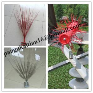 Buy cheap Best quality bird proof, low price Owl Bird Repeller, new type Bird Repeller product