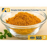 Natural Dried Fish Powder 60% Protein Content With Healthy Raw Material
