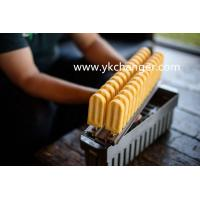 Forming moulds ice cream ice lolly stainless steel 28mold 63ml brida ataforma type with plain stick holder