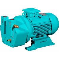 Buy cheap single stage cast iron material liquid ring vacuum pump for pharmaceutical industry product