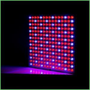 IP54屋内LEDは完全なスペクトルの植物が温室のためのライト32 Wを育てるABS/ライトを育てます