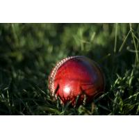 Buy cheap Durable cricket artificial grass product