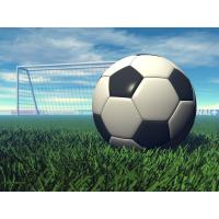Buy cheap Soccer&Football artificial turf(SAMPLES FREE) product