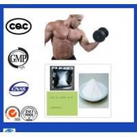 Buy cheap Anti Aging Durabolin Nandrolone Phenylpropionate NPP Hormone Steroid For Muscle Building product