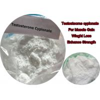 High Purity Testosterone Enanthate Powder / Test E Steroids Powder 315-37-7