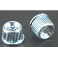 Buy cheap Nut/Nuts/Insert Nuts/Pipe Nuts/Round Nuts/Shelf/Suppoeter product