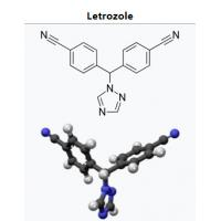 Femara Letrozole Natural Aromatase Inhibitors Supplements For Bulking Post Cycle Therapy