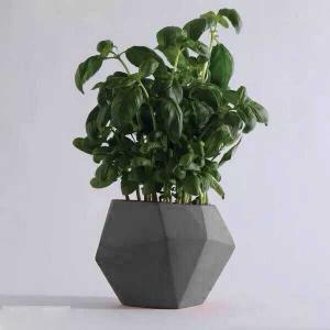 Buy cheap Grey Cylinder Flower Concrete Plant Pots Irregular Pattern Home Decoration product